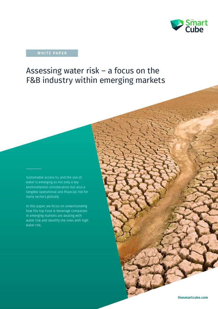 Assessing_Water_Risk_Whitepaper_Thumbnail_2018-03-21.jpg